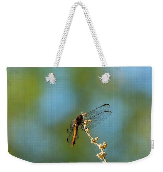 Dragonfly Wings Weekender Tote Bag