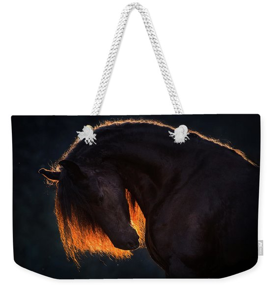 Drawn From The Darkness Weekender Tote Bag