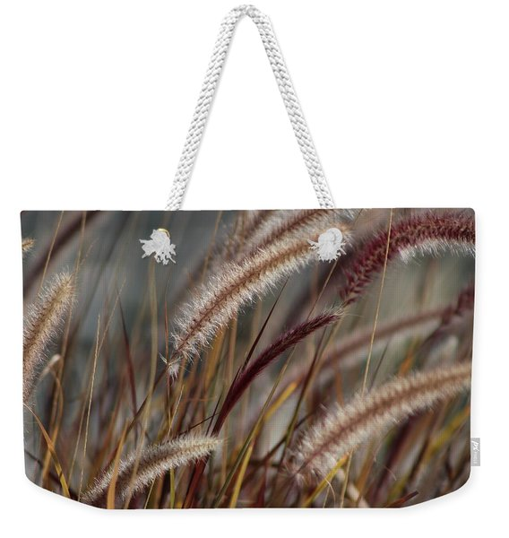 Dried Desert Grass Plumes In Honey Brown Weekender Tote Bag