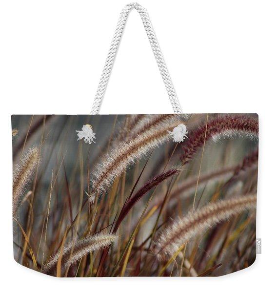 Dried Desert Grass Plumes In Honey Brown Weekender Tote Bag