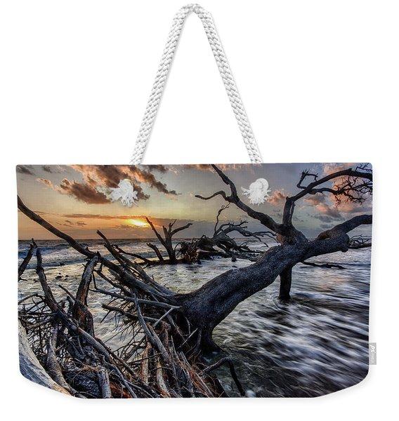 Driftwood Beach 5 Weekender Tote Bag