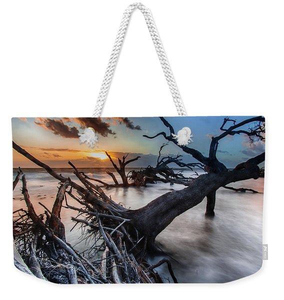 Driftwood Beach 6 Weekender Tote Bag