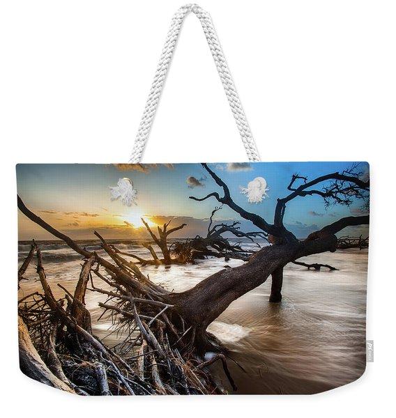Driftwood Beach 7 Weekender Tote Bag