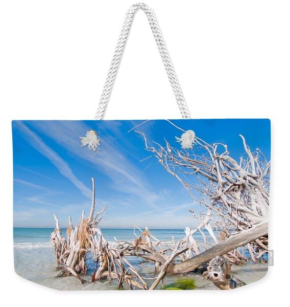 Driftwood C141348 Weekender Tote Bag