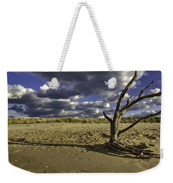 Driftwood II Weekender Tote Bag