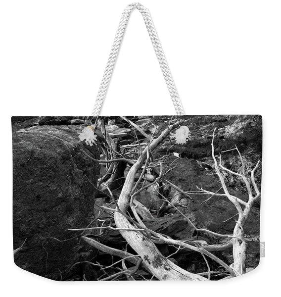 Driftwood Tree, La Verna Preserve, Bristol, Maine  -20999-30003 Weekender Tote Bag