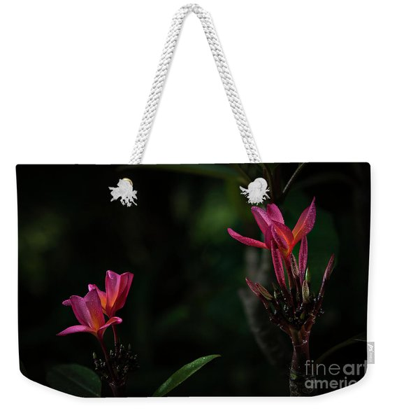 Dual Red Plumerias Weekender Tote Bag