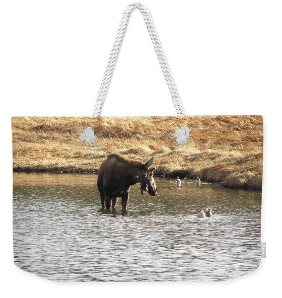 Ducks - Moose Rollinsville Co Weekender Tote Bag