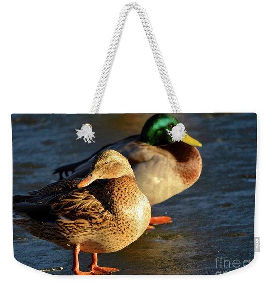 Duck Pair Sunbathing On Frozen Lake Weekender Tote Bag