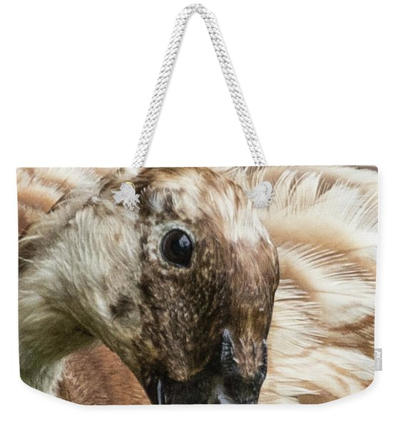 Ducks Head Weekender Tote Bag