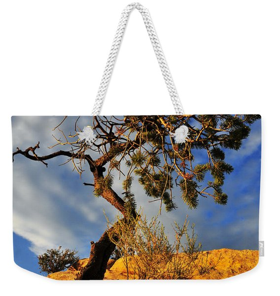 Weekender Tote Bag featuring the photograph Dusk Dance by Skip Hunt