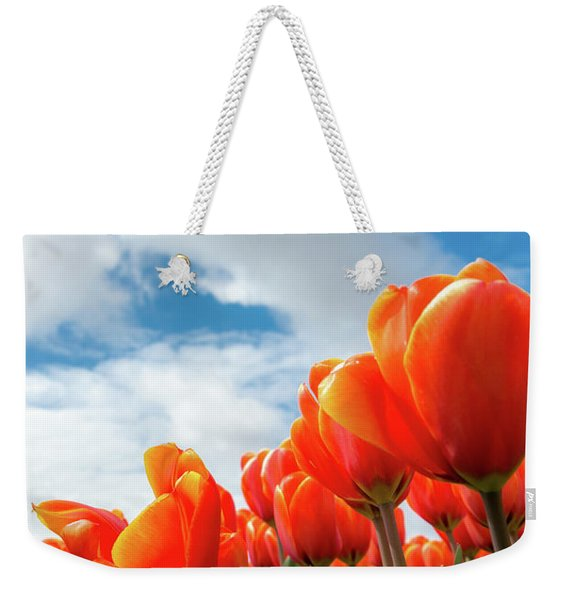 Dutch Tulips Near Keukenhof Weekender Tote Bag