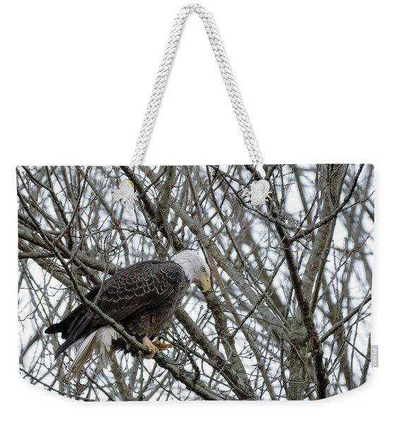 Eagel 3 Weekender Tote Bag