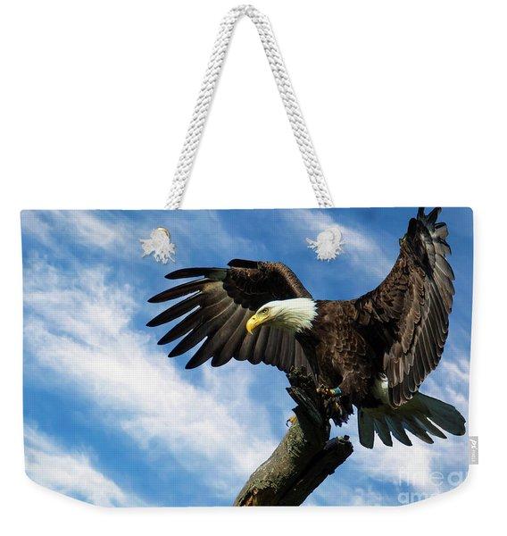 Eagle Landing On A Branch Weekender Tote Bag