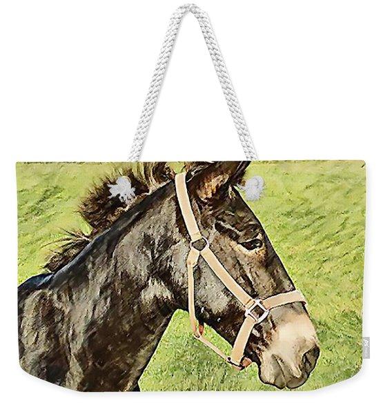Earistotle Weekender Tote Bag