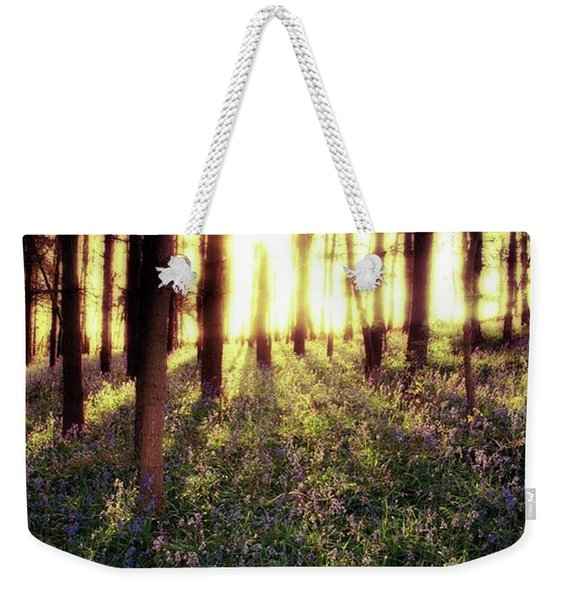 Early Morning Amongst The Weekender Tote Bag