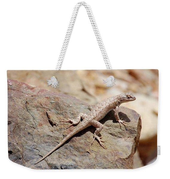 Eastern Fence Lizard, Sceloporus Undulatus Weekender Tote Bag