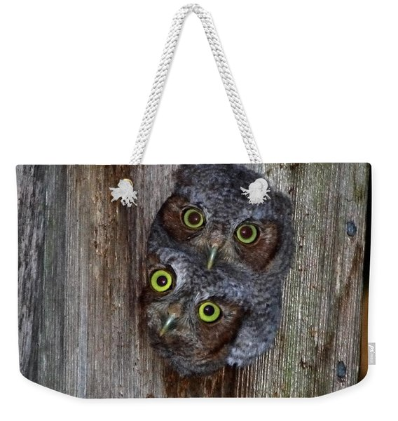 Eastern Screech Owl Chicks Weekender Tote Bag
