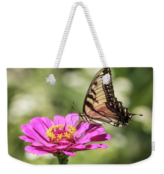 Eastern Tiger Swallowtail 2016-1 Weekender Tote Bag