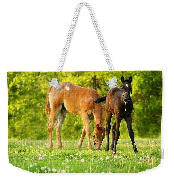 Easy Pickins Weekender Tote Bag