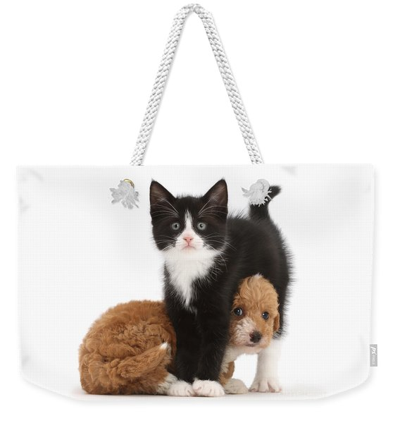 Easy To See Which One Of Us Is The Boss Weekender Tote Bag