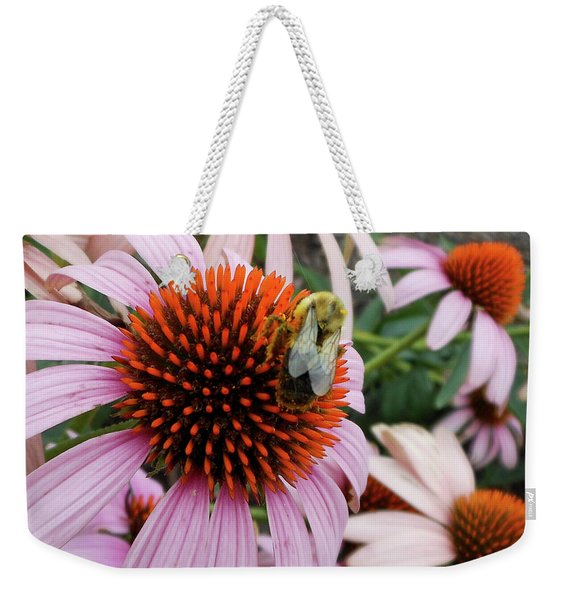 Weekender Tote Bag featuring the photograph Echinacea Tea Time For Bee by Kristin Aquariann