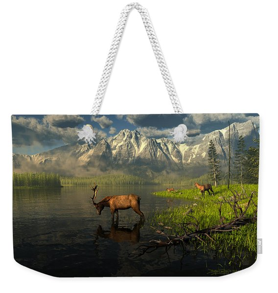 Echoes Of A Lost Frontier Weekender Tote Bag