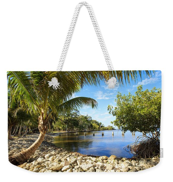 Edisons Back Yard Weekender Tote Bag