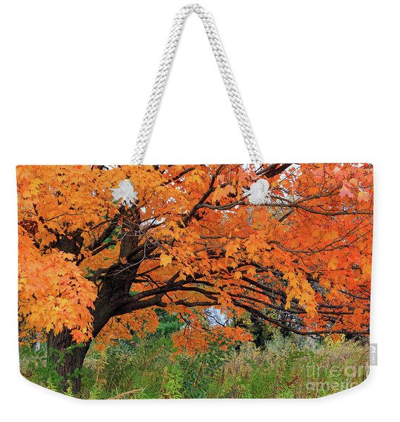 Edna's Tree Weekender Tote Bag