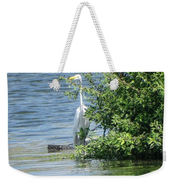 Great Egret In The Marsh Weekender Tote Bag