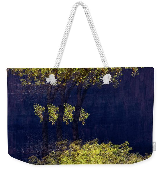 Elegance In The Park Horizontal Adventure Photography By Kaylyn Franks Weekender Tote Bag