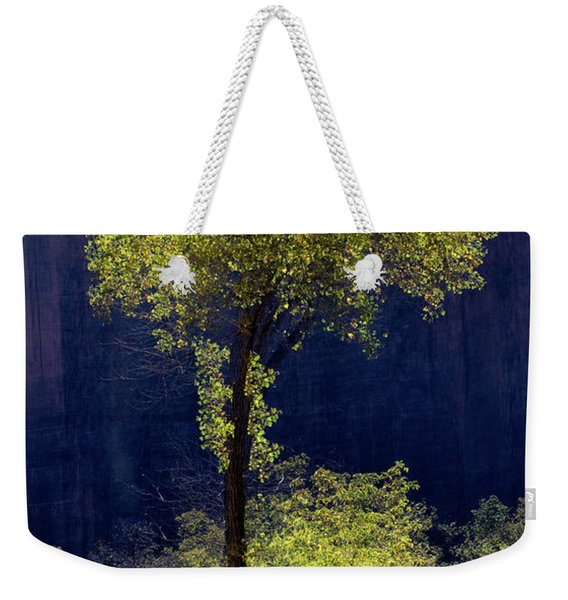 Elegance In The Park Vertical Adventure Photography By Kaylyn Franks Weekender Tote Bag