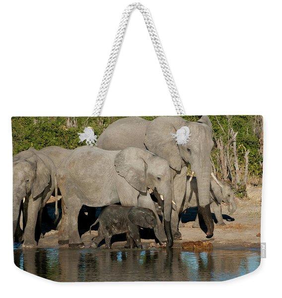 Elephant 3 Weekender Tote Bag
