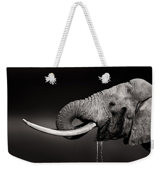 Elephant Bull Drinking Water - Duetone Weekender Tote Bag