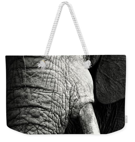 Elephant Close-up Portrait Weekender Tote Bag