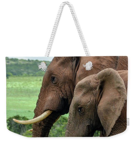 Elephant Couple Profile Weekender Tote Bag