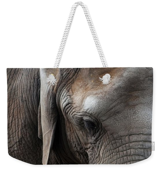 Weekender Tote Bag featuring the photograph Elephant Eye by Lorraine Devon Wilke
