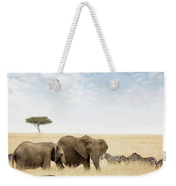 Elephants And Zebras In The Masai Mara Weekender Tote Bag