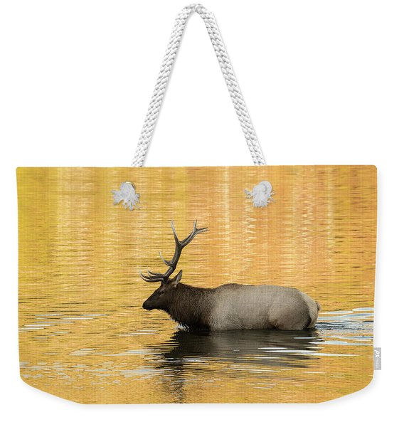 Elk In Golden River Weekender Tote Bag