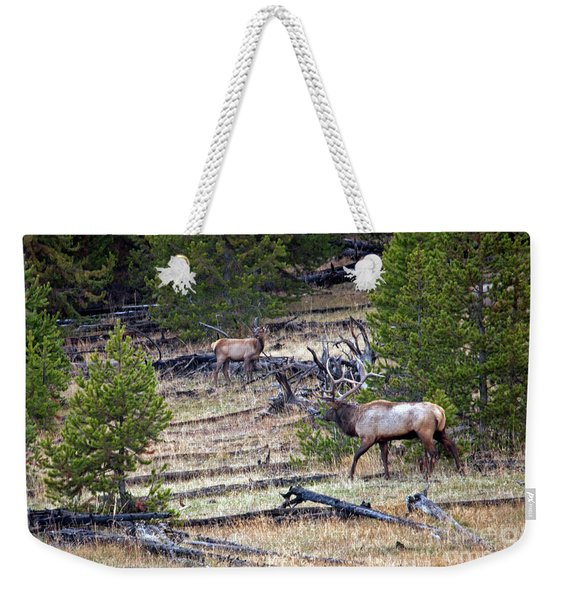Elk In Yellowstone Weekender Tote Bag