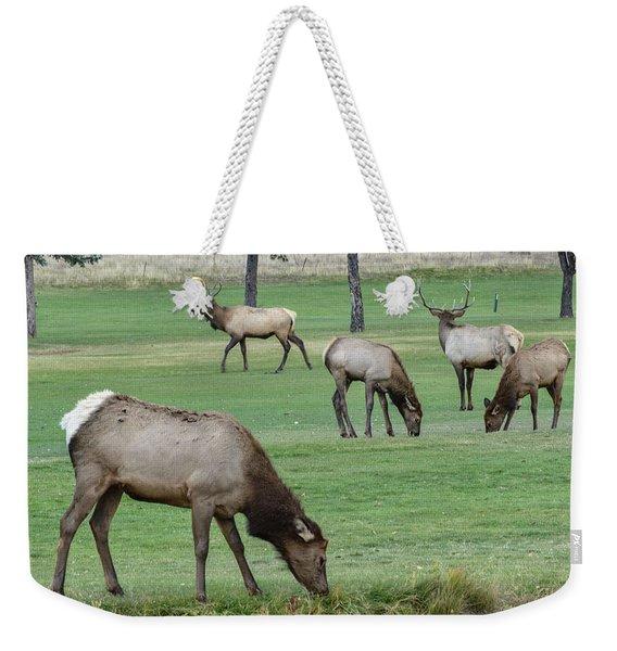 Elk On Golf Course Estes Park Colorado Weekender Tote Bag