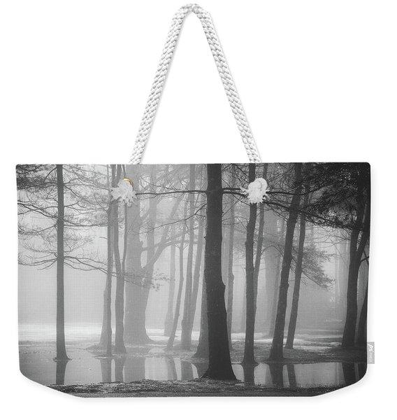 Ellacoya Fog - January Thaw Weekender Tote Bag