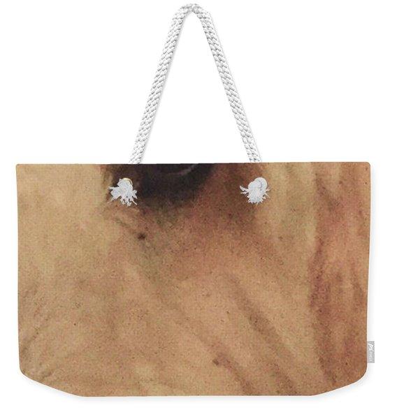 Elleye Weekender Tote Bag