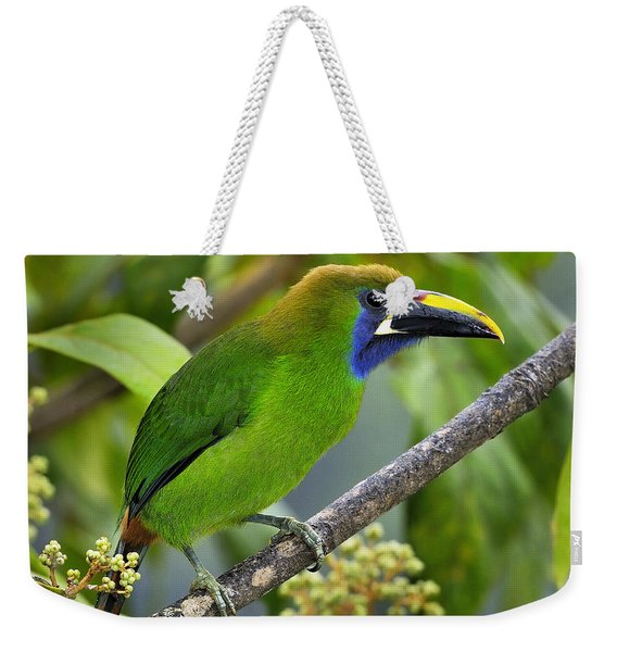 Emerald Toucanet Weekender Tote Bag