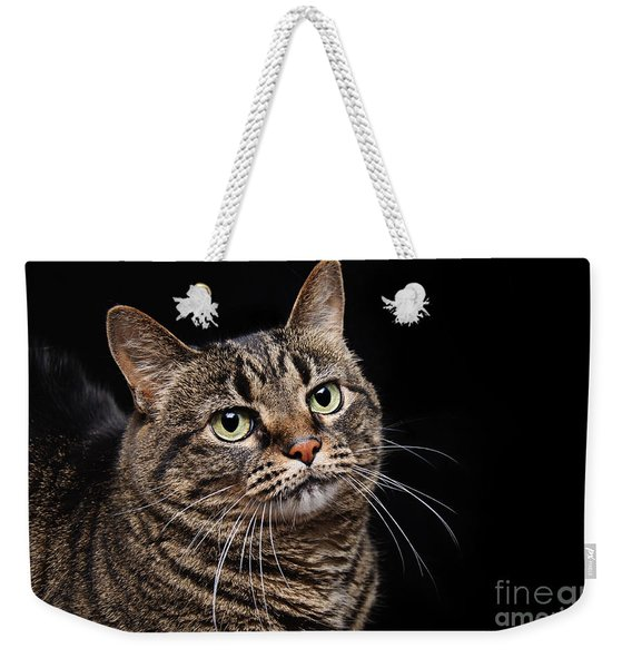 Emmy The Cat Ponder Weekender Tote Bag