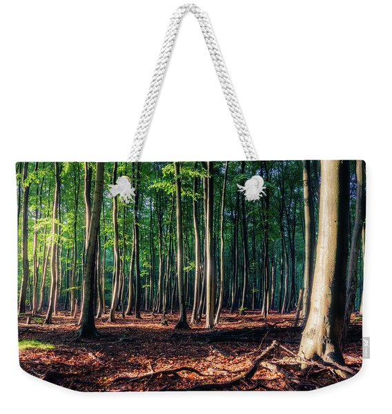 Weekender Tote Bag featuring the photograph Enchanted Forest by Dmytro Korol