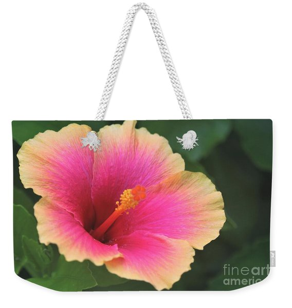 Encore Presentation - Simple Pleasure Hibiscus Weekender Tote Bag