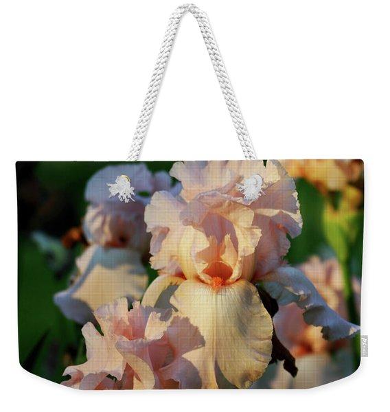 End Of Day Pink Irises 6702 H_2 Weekender Tote Bag