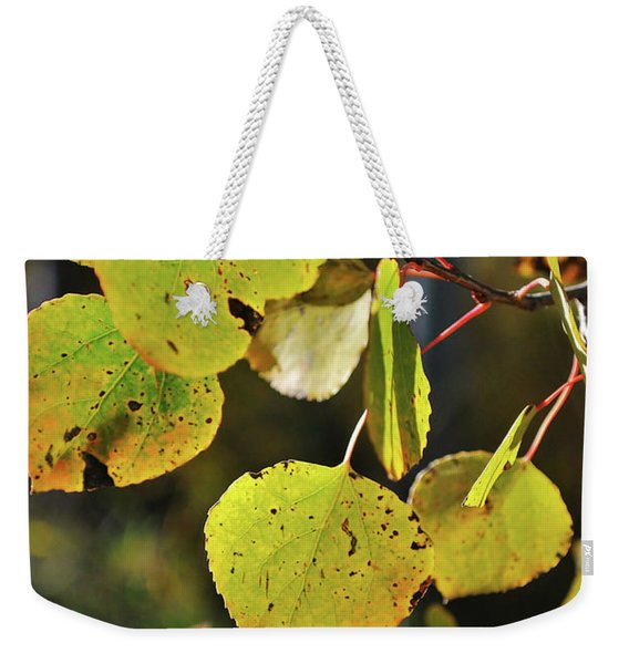 Weekender Tote Bag featuring the photograph End Of Summer by Ron Cline