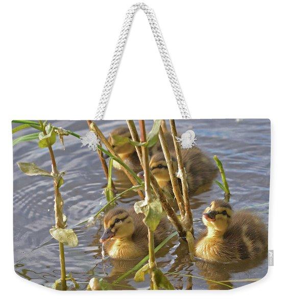 Endearing Looks Weekender Tote Bag
